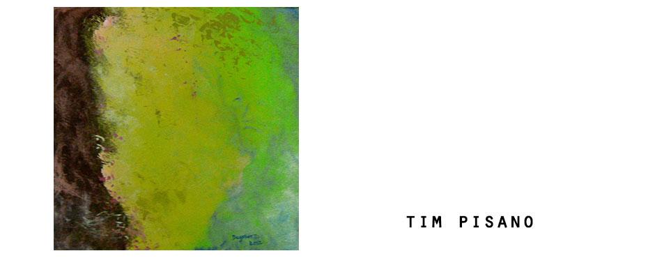 tim-web2